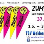 2013_sommerangebot_zumba