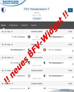 BFV Liga-Widget